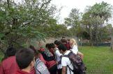 Estacion Biologica de Corrientes 14