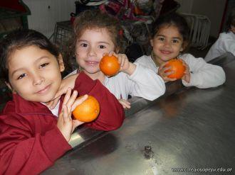 Jugo de Naranjas en Salas de 5 28