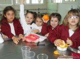 Jugo de Naranjas en Salas de 5 29
