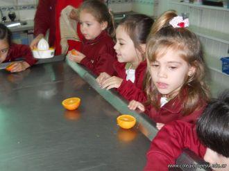 Jugo de Naranjas en Salas de 5 42