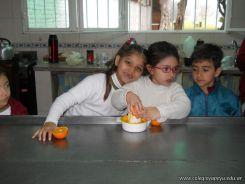 Jugo de Naranjas en Salas de 5 46