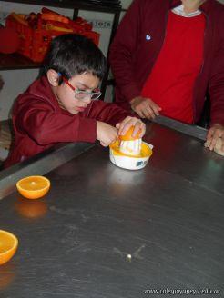 Jugo de Naranjas en Salas de 5 48