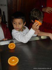 Jugo de Naranjas en Salas de 5 50