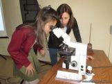 Aprendimos a usar el Microscopio Optico 59