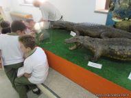 Visita al Museo de Ciencias Naturales 122