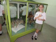 Visita al Museo de Ciencias Naturales 76