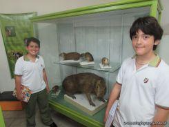Visita al Museo de Ciencias Naturales 91