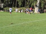Copa Saint Patrick 18