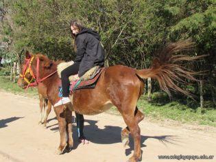 Viaje a los Esteros del Ibera 50