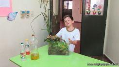2do grado con Plantas Acuaticas 1