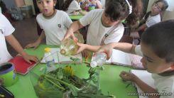 2do grado con Plantas Acuaticas 30