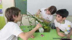2do grado con Plantas Acuaticas 33