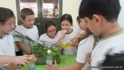 2do grado con Plantas Acuaticas 6