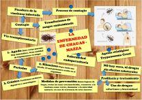 Enfermedad de Chagas 1