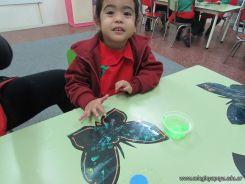 Mariposas en Sala de 3 11