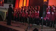 Muestra de Musica 41