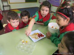 Brochette de Frutas en Salas de 5 25