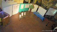 Expo de 4to grado 35