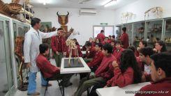 Visita a la Facultad de Veterinaria 3