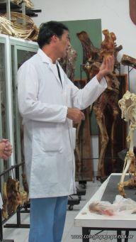 Visita a la Facultad de Veterinaria 9