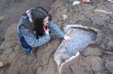 Viaje a Iguazu 15