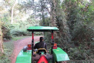 Viaje a Iguazu 78