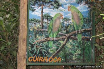 Viaje a Iguazu 92