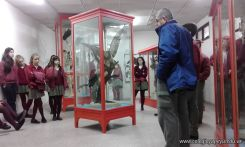 Visita al Museo de Cs. Naturales Amado Bonpland 8