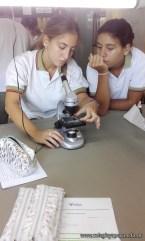 Microscopía 1