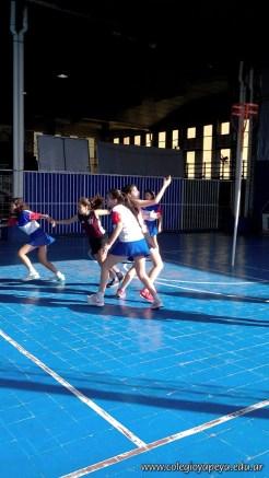 Torneo intercolegial de Cesto 15