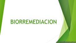 Biorremediación 1