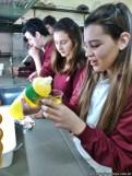 Reacciones de fermentación 3