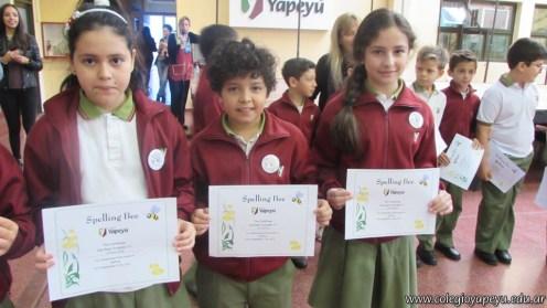 Certificados Spelling Bee 32