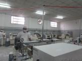 Visita a fábrica de pastas 5