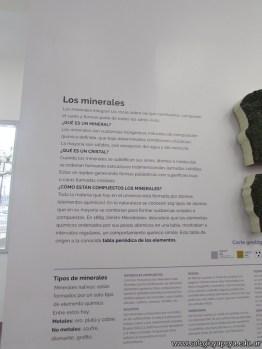 Visita al museo de Ciencias Naturales 28