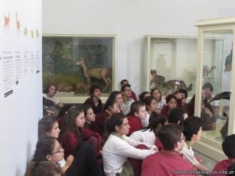 Visita al museo de Ciencias Naturales 52