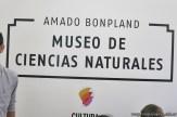 Visita al museo de Cs. Naturales 5