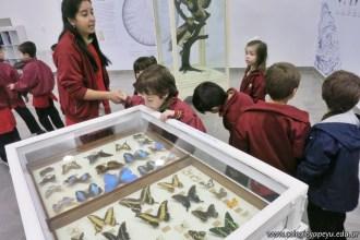 Visita al museo de Cs. Naturales 62