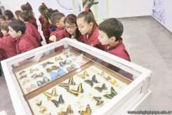 Visita al museo de Cs. Naturales 65