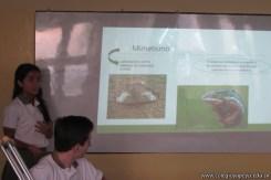 Clase abierta adaptaciones de animales y plantas 11