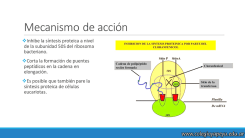 Mecanismo de acción de los antibióticos 9