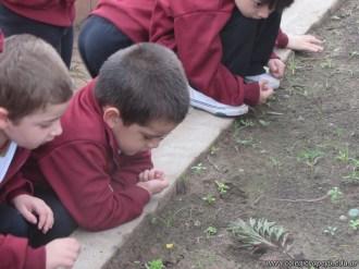 Actividades en el Campo de Alumnos de Sala de 4 años 13