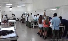 Clase práctica en Anatomía Humana 3