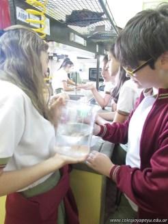 Velocidad de las reacciones químicas 1
