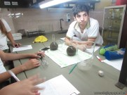Velocidad de las reacciones químicas 21