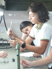 Velocidad de las reacciones químicas 8