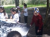 campamento 8