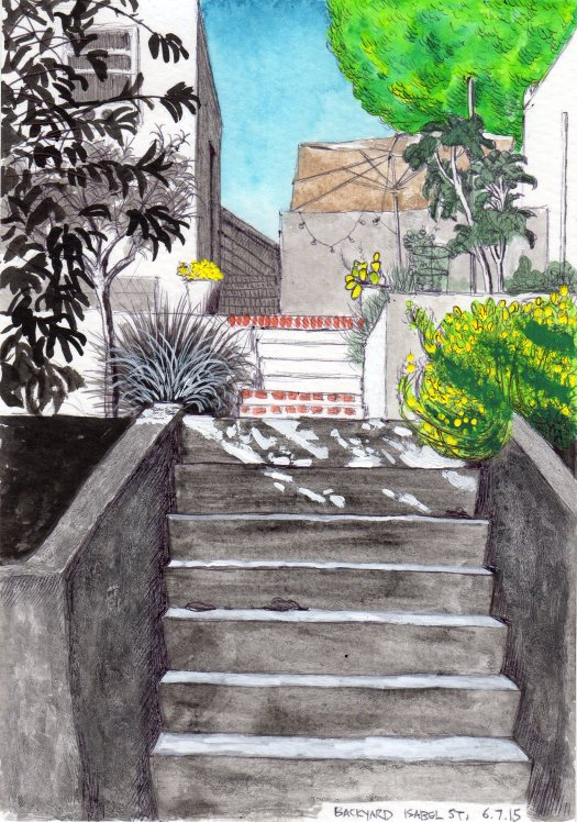 Backyard, Isabel Street June 7, 2015 2015 Ink and gouache on paper 8x5.5 inches