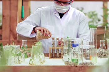 A scientist performing seed research
