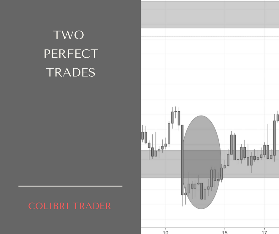 2 Great Trades I Took Recently- is it a coincidence that NZDUSD and Crude Oil moved in the same direction